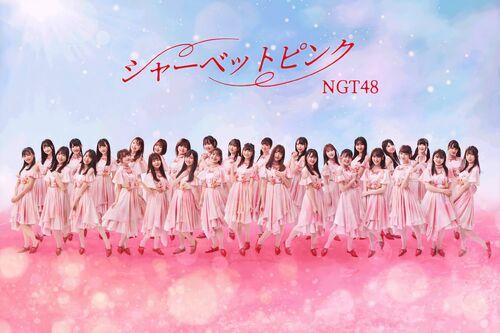 NGT48 5
