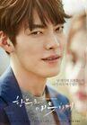 Uncontrollably Fond-KBS2-2016-2