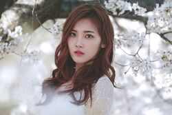Su Yeon A.DE