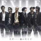TadaAitakuteEXILE(CD DVD)