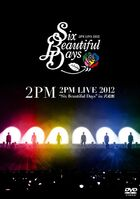 2PM LIVE 2012 'Six Beautiful Days' in Budokan