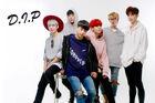 D.I.P Members 2017