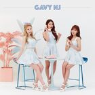 Gavy NJ13