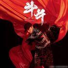 Hua Chen Yu - Bullfighting-CD