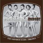 Wonder-girls-the-wonder-years-trilogy-nobody