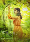 Forest-KBS2-2020-03