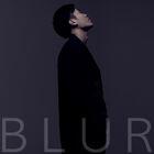 Blur 2013