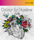 MONKEY MAJIK - Colour by Number