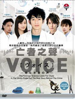 Voice Jpn Front