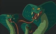 Magic Cobras