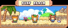 SurfBeachRapo