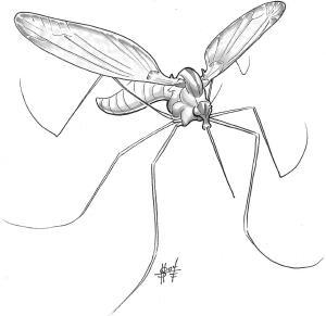 Mosquito, Monstrous