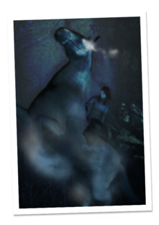 G hantu65