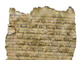 Mystery Journal 1