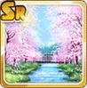 Cherry Blossom Stream Day
