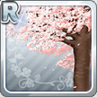 Large Cherry Blossom Tree Type 1