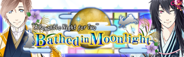 Bathed in Moonlight Banner