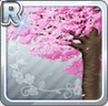 Large Cherry Blossom Tree Type 3