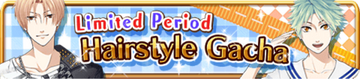 Limited Hairstyle Banner