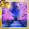 Cherry Blossom Stream Night