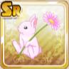 Lil' Rabbits Flower
