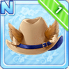 Western Cat Hat