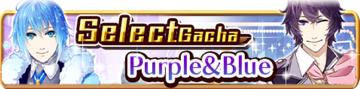 Purple & Blue Gacha