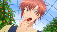 S2 ep8 Kanade cherry tomato