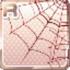 Spider Web Brown