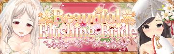 Beautiful Blushing Bride Banner