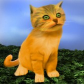 File:DW Kitten.png