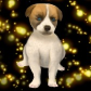 File:DW Puppy.png