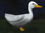 File:Wild duck.png