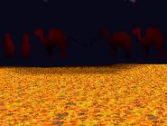 Downer camels