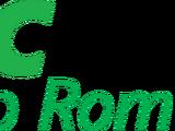 VRC (Digital Video Storage Cartridge)