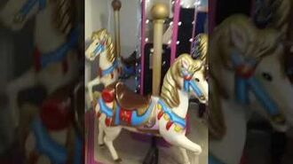 Coin operated carousel ride for sale