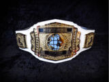 WCW Intercontinental Championship