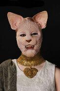 JaylinRoundscat1