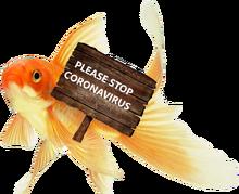 StopCoronaVirusFS