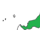Malaypore