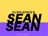 My, My, My (DJ Paleface and Sean Sean song)