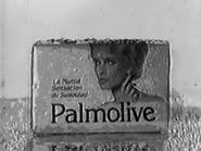 Palmoliveivanland93