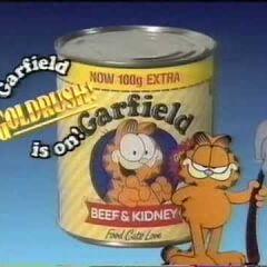 Garfield (1992)