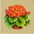 Coll arborday geranium.png