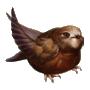 Coll birds sparrow.png