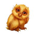 Baby owl.png