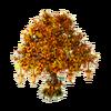 Autumn tree structure