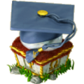 Graduate cap deco