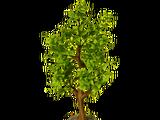Autumn tree (structure)