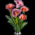 Res calla lilies 2.png